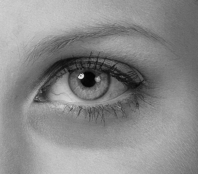 les cernes - les yeux